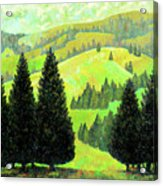 Alpine Hills Acrylic Print