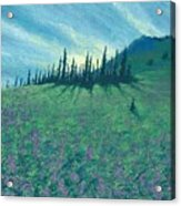 Alpine Hillside Acrylic Print
