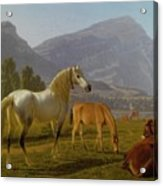 Alpine Landscape Acrylic Print