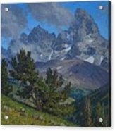 Alpine Sentinels Acrylic Print