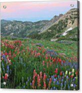 Alpine Wildflowers And View At Sunset Acrylic Print
