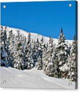 Alpine Winter Acrylic Print