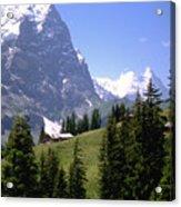 Alps Acrylic Print