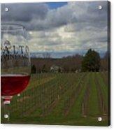 Alto Vineyards Acrylic Print