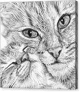 Always Together Acrylic Print