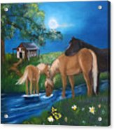 Alyssas Horses Acrylic Print