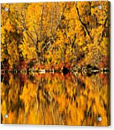 Amazing Autumn Acrylic Print
