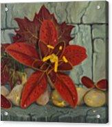 Ambrosia Flower Acrylic Print