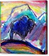 American Buffalo Sunset Acrylic Print by M C Sturman