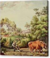 American Farm Scenes Acrylic Print
