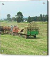 American Farming Acrylic Print