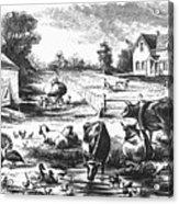 American Farmyard, C1870 Acrylic Print by Granger