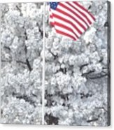 American Flag Snow  Acrylic Print