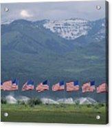 American Flags Honoring Veterans Acrylic Print by James P. Blair