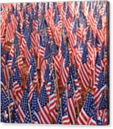 American Flags In Tampa Acrylic Print