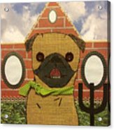 American Pug Gothic Acrylic Print