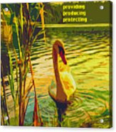 Americas Wetlands Acrylic Print