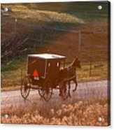 Amish Buggy Afternoon Sun Acrylic Print