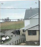 Amish Children Walk To The Barn Acrylic Print