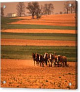 Amish Country Farm Landscape Acrylic Print
