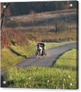 Amish Country Horse And Buggy In Autumn Acrylic Print