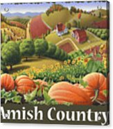Amish Country T Shirt - Pumpkin Patch Country Farm Landscape 2 Acrylic Print
