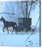 Amish Dreamscape Acrylic Print by David Arment