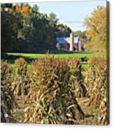 Amish Farm Country Fall Acrylic Print