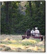 Amish Farmer Raking Hay At Dusk Acrylic Print