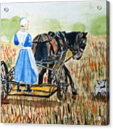 Amish Girl With Buggy Acrylic Print