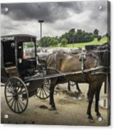 Amish Horse And Buggy Acrylic Print