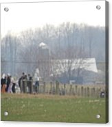 Amish Youth Gather After A Volleyball Game Acrylic Print