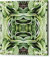 Ammonoosuc Green Acrylic Print