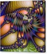 Amphipod Acrylic Print