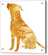 Amstaff Gold Silhouette Large Poster Acrylic Print