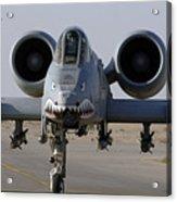An A-10 Thunderbolt II Acrylic Print