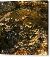 An Abstract Fall Reflection Acrylic Print