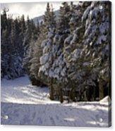 An Alpine Ski Trail On Wildcat Mountain Acrylic Print