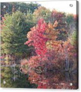 An Autum Day Acrylic Print