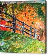 An Autumn Stroll in the Woods Acrylic Print