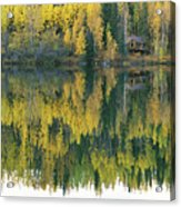 An Autumn View Of A Cabin Reflected Acrylic Print by Rich Reid