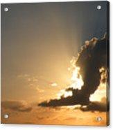 An Eagle In The Sky Acrylic Print