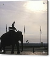 An Elephant At The Royal Palace Acrylic Print
