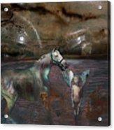 An Image Of Death Acrylic Print