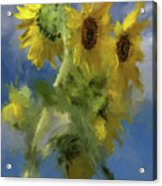 An Impression Of Sunflowers In The Sun Acrylic Print