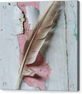 An Old Door And Feather Acrylic Print