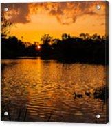 An Orange Pond. Acrylic Print