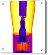 An X-ray Of Historic Audion Vacuum Tube Acrylic Print