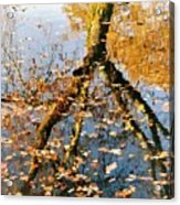 Anchorage In Autumn Acrylic Print