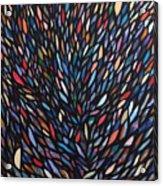 Anchovies  Abstract Fish Acrylic Print